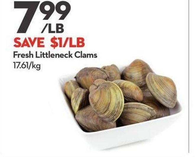 Fresh Littleneck Clams