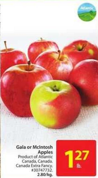 Gala or Mclntosh Apples