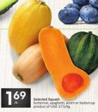 Selected Squash Butternut - Spaghetti - Acorn or Buttercup Product of USA