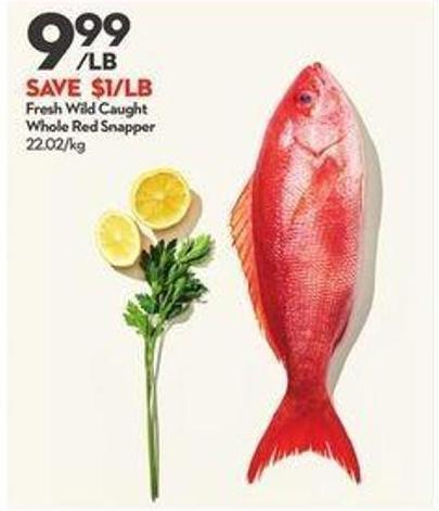 Fresh Wild Caught Whole Red Snapper