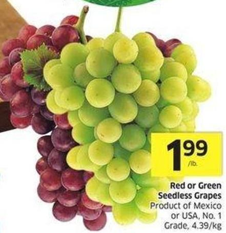 Red or Green Seedless Grapes Product of Mexico or USA - No. 1 Grade - 4.39/kg