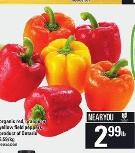 Organic Red - Orange Or Yellow Field Peppers