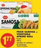 Pran Samosa or Vegetable Spring Roll - 400 g