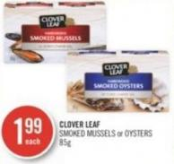 Clover Leaf Smoked Mussels or Oysters 85g