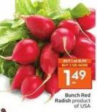 Bunch Red Radish