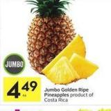 Jumbo Golden Ripe Pineapples Product of Costa Rica