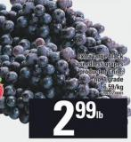 Extra Large Black Seedless Grapes