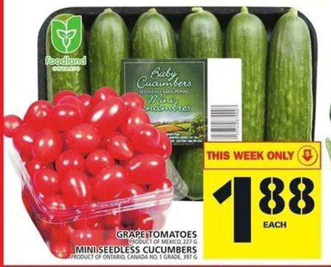 Grape Tomatoes Or Mini Seedless Cucumbers