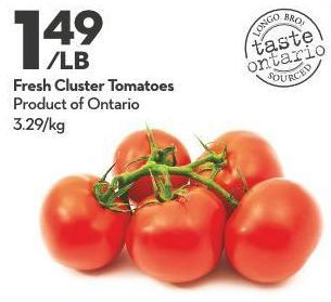 Fresh Cluster Tomatoes