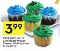 Treasure Mills School Safe Winter Themed Mini Cupcakes