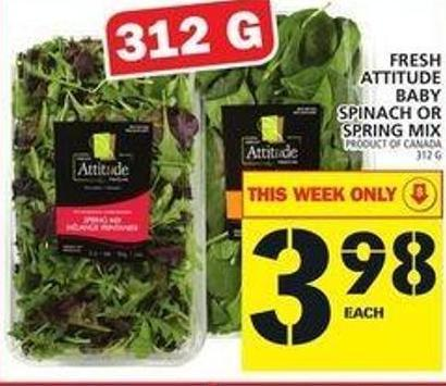 Fresh Attitude Baby Spinach Or Spring Mix