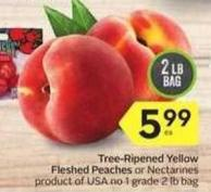 Tree-ripened Yellow Fleshed Peaches or Nectarines