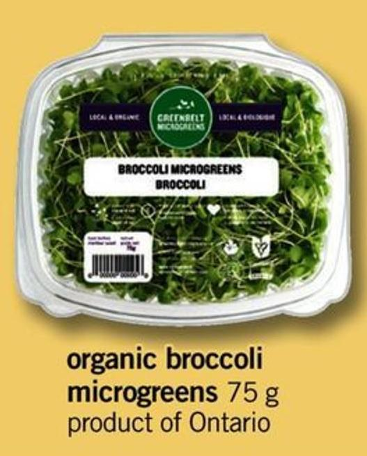 Organic Broccoli Microgreens - 75 G