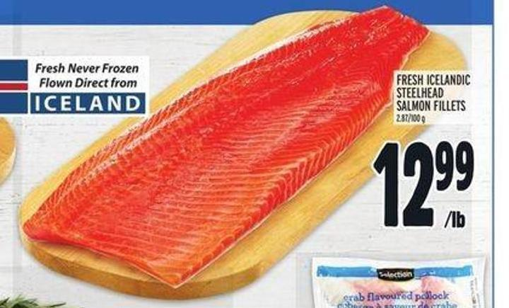Fresh Icelandic Steelhead Salmon Fillets