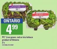 PC Live Green - Red Or Trio Lettuce - 2's