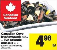 Canadian Cove Fresh Mussels 907 g or Live Atlantic Mussels 2 Lb
