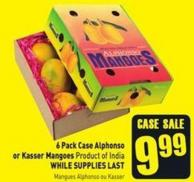 6 Pack Case Alphonso or Kasser Mangoes Product of India