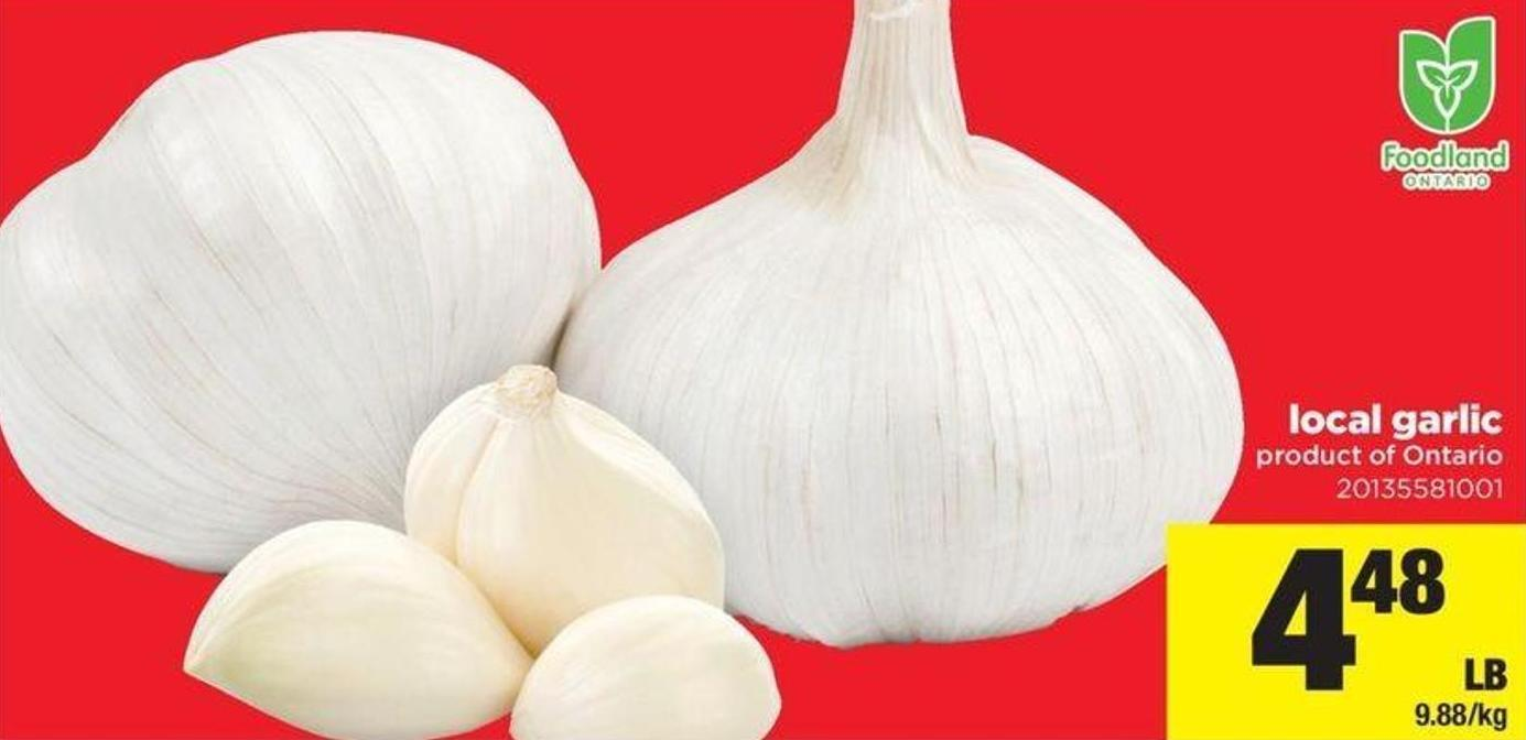 Local Garlic