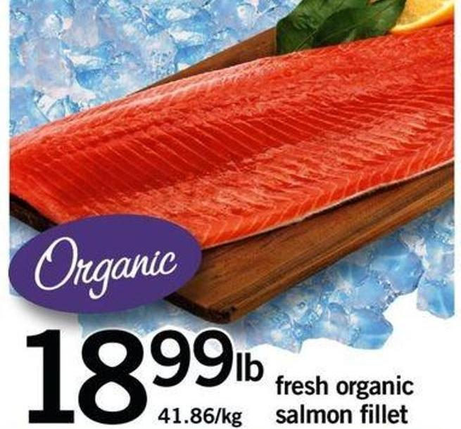 Fresh Organic Salmon Fillet