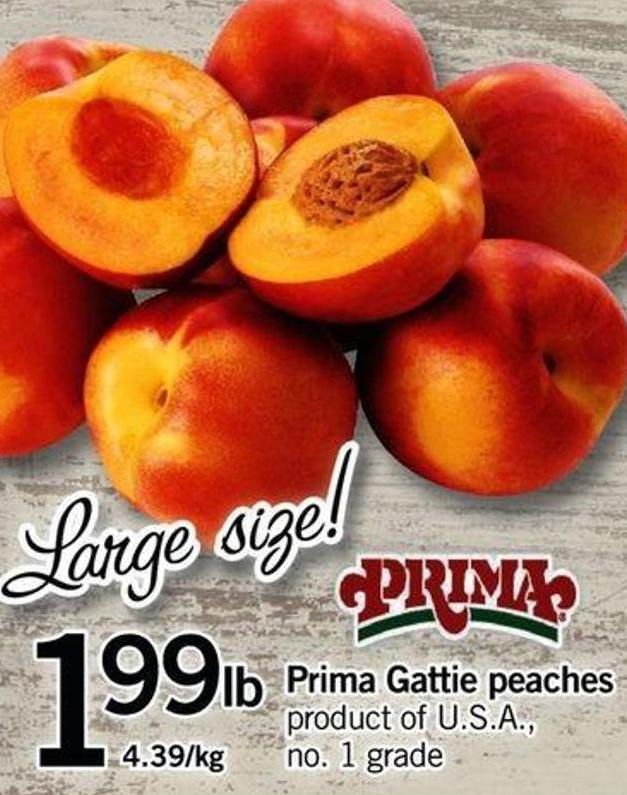 Prima Gattie Peaches