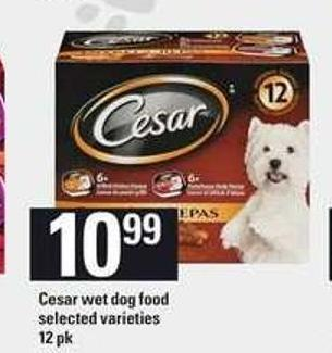 Cesar Wet Dog Food - 12 Pk