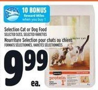 Selection Cat or Dog Food
