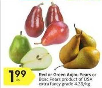 Red or Green Anjou Pears