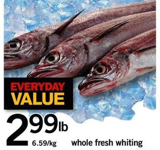 Whole Fresh Whiting