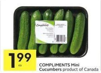 Compliments Mini Cucumbers