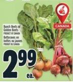 Bunch Beets Or Golden Beets