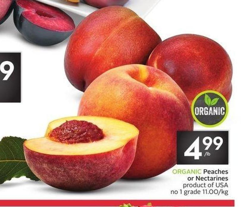 Organic Peaches or Nectarines