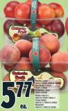 Peaches 3 L Basket Blue Plums 1.5 L Basket Nectarines 2 L Basket