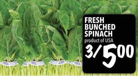 Fresh Bunched Spinach
