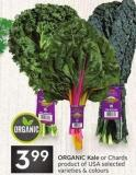Organic Kale or Chards