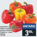 Greenhouse Extra Large Red - Yellow Or Orange Sweet Peppers