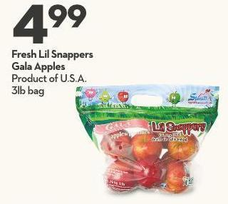 Fresh Lil Snappers Gala Apples