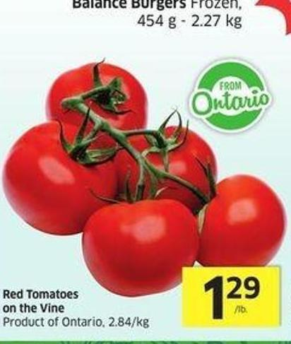 Red Tomatoes On The Vine Product of Ontario -