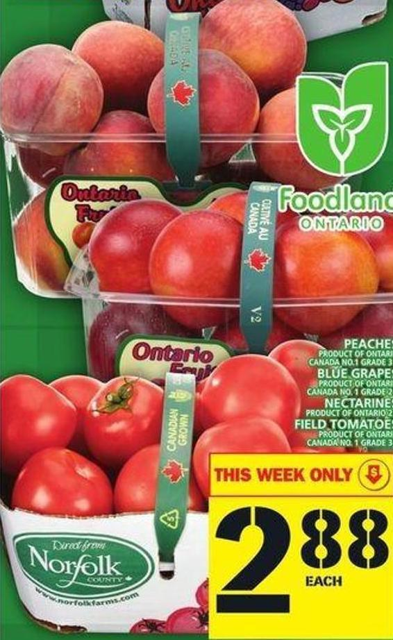 Peaches Or Blue Grapes Or Nectarines Or Field Tomatoes