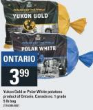 Earth Fresh Yukon Gold Or Polar White Potatoes - 5 Lb Bag