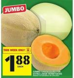 Jumbo Cantaloupes Or Extra Large Honeydews