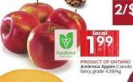 Ambrosia Apples Canada Fancy Grade