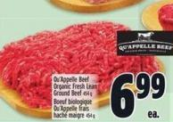 Qu'appelle Beef Organic Fresh Lean Ground Beef