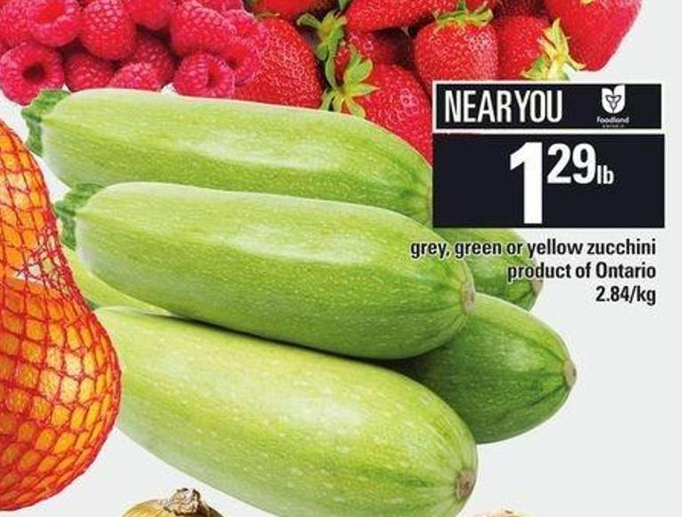 Grey - Green Or Yellow Zucchini