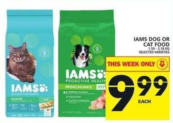 Iams Dog Or Cat Food