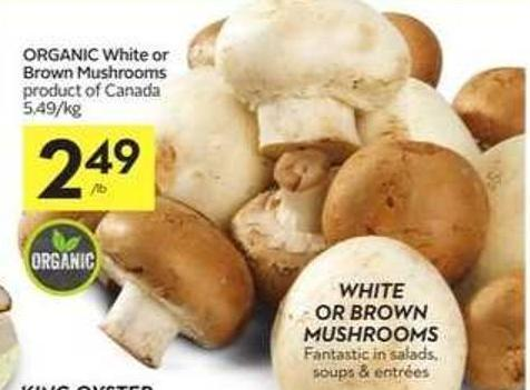 Organic White or Brown Mushrooms