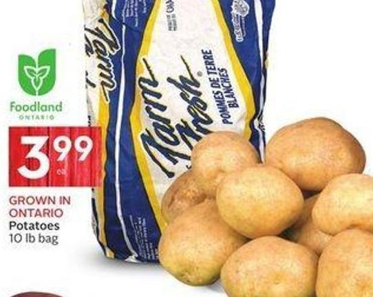Eco-spuds Potatoes