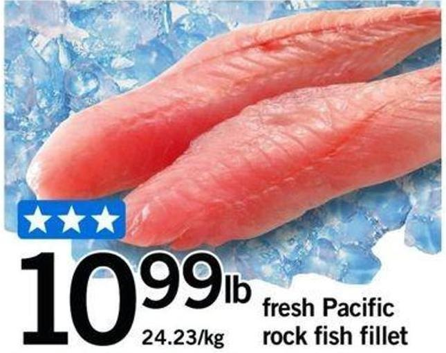 Fresh Pacific Rock Fish Fillet