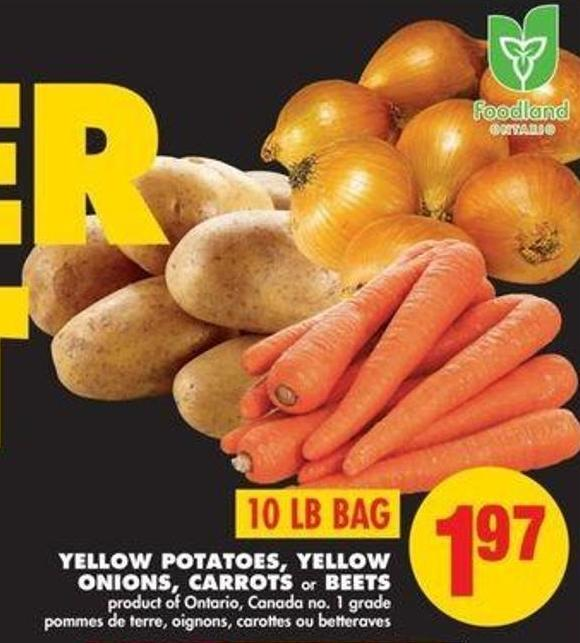 Yellow Potatoes - Yellow Onions - Carrots or Beets - 10 Lb Bag