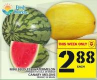 Mini Seedless Watermelon Or Canary Melons