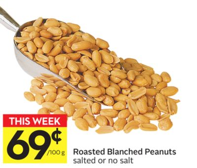 Roasted Blanched Peanuts
